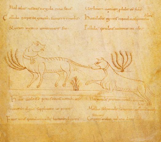 Nivardus.bnf