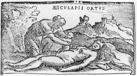Asclepius taken from The Womb of Coronis. Wood carving, 1549 edition of Alessandro Benedetti_s De Re Medica.