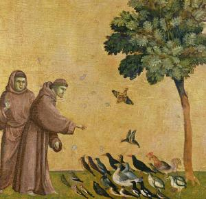 Giotto di Bondone, San Francesco predica agli uccelli