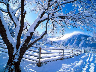 nature-wallpaper-snow-wallpaper-1024x768